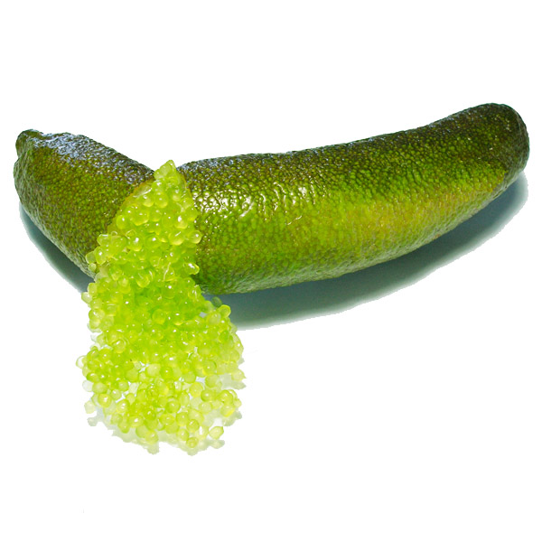 Crystal Finger Lime