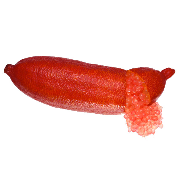 Red Champagne Finger Lime