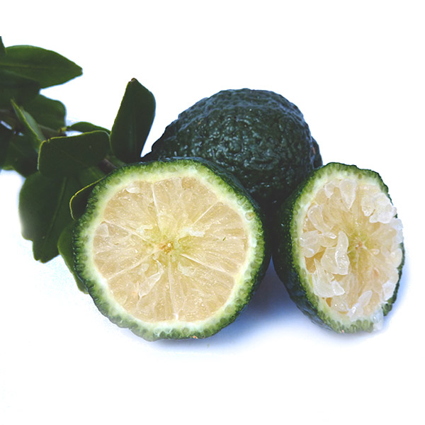 Round-Lime
